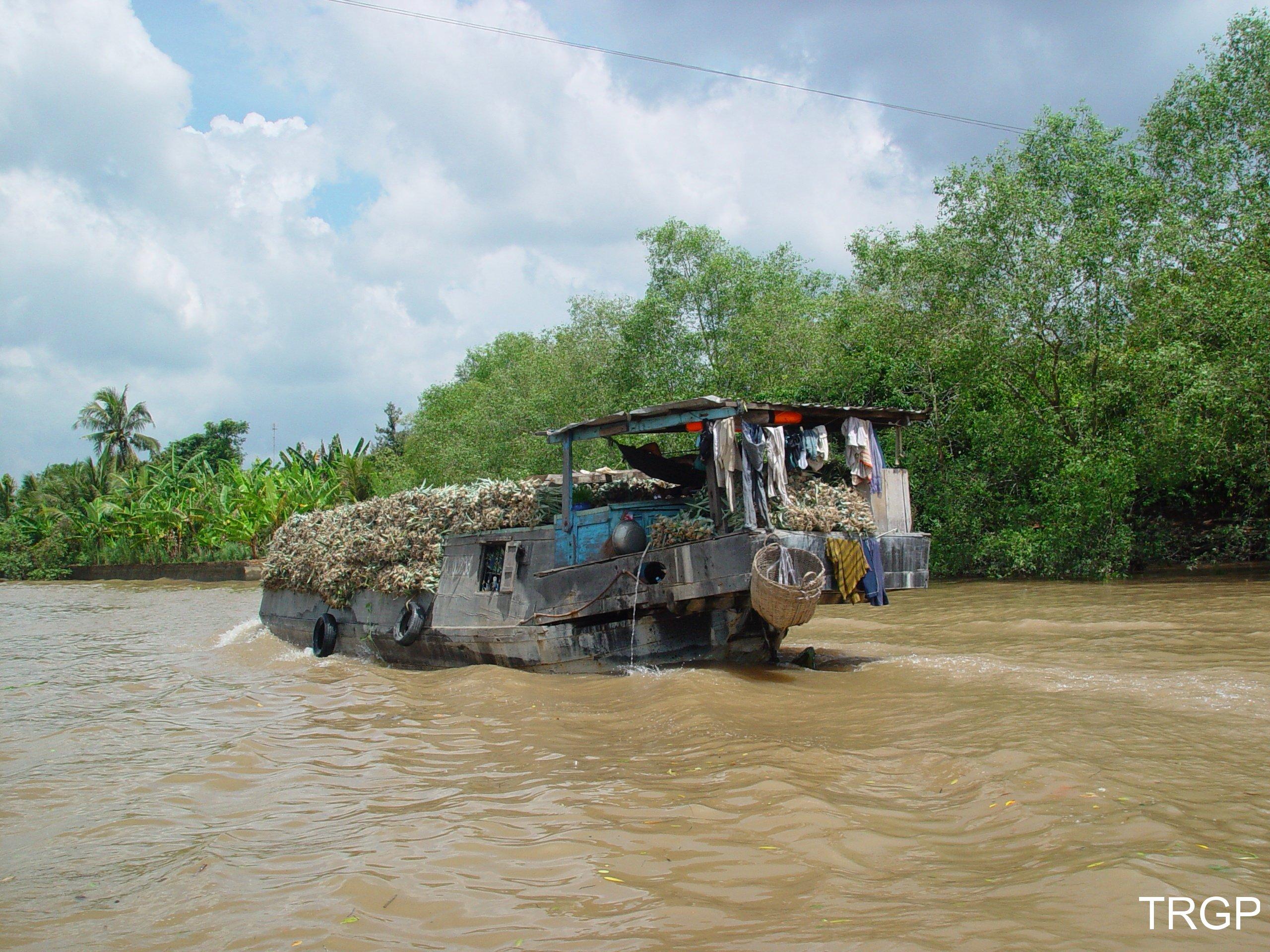 Delta de Mekong