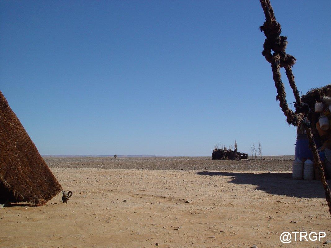 Desert i Paris Dakar