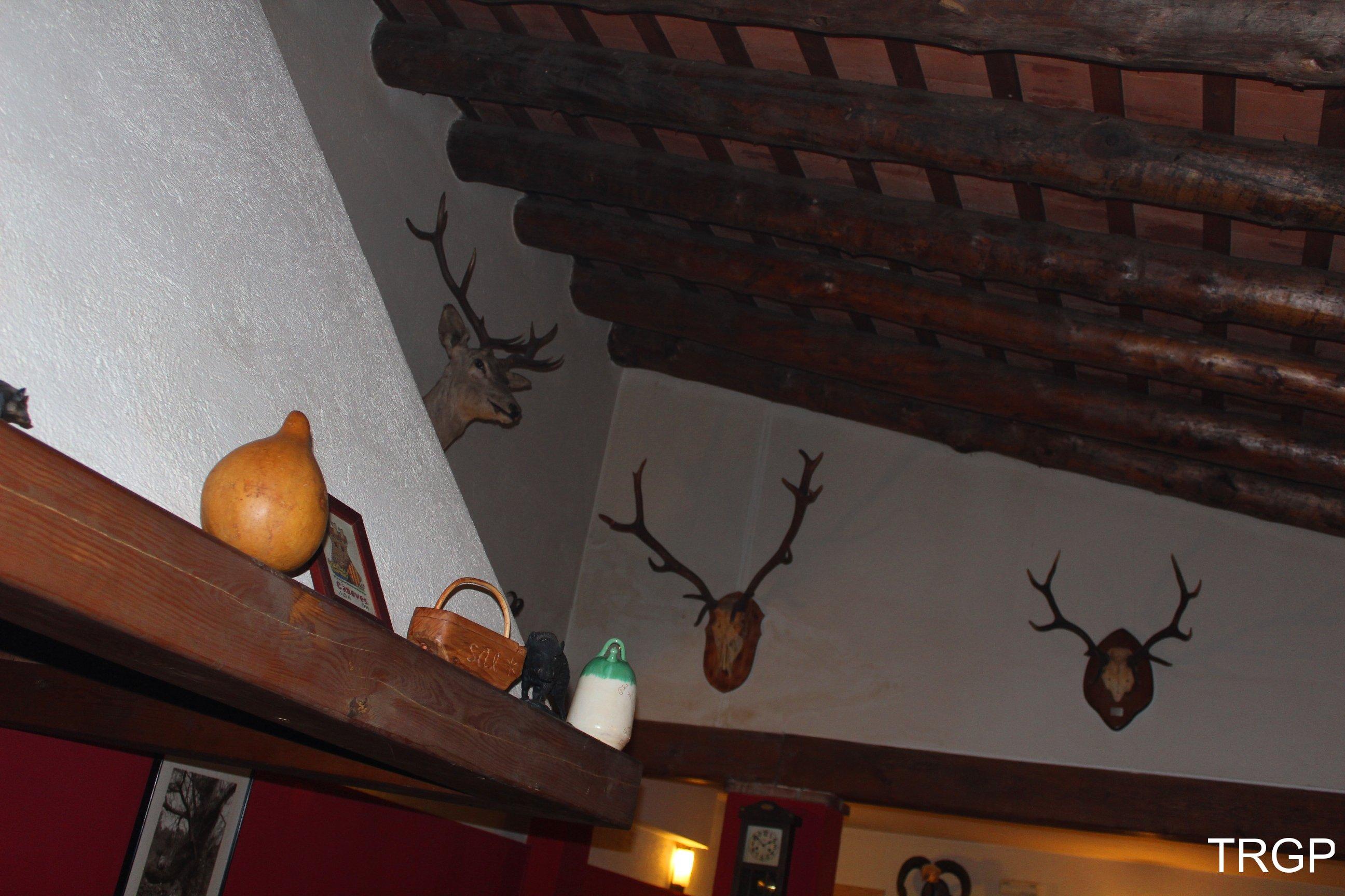 La Casa del Bosc